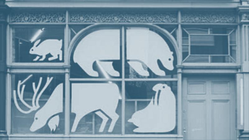 Технические советы по новогоднему оформлению витрин учреждений культуры